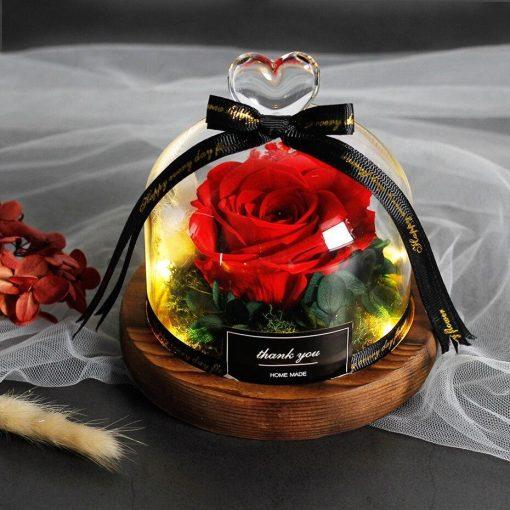 Rose Éternelle Sous Cloche Avec Led